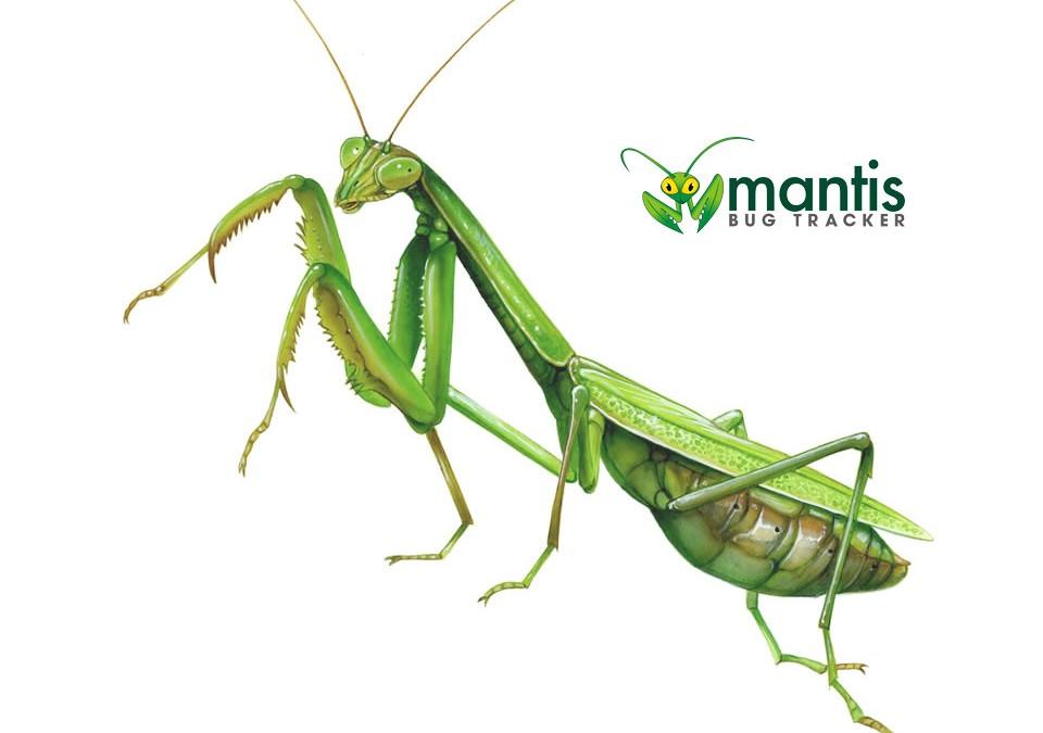 Mantis APPLICATION ERROR #2900