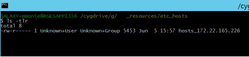 unkown_user and unknown_group unable to delete windows file